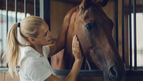 How horses perceive and respond to human emotion
