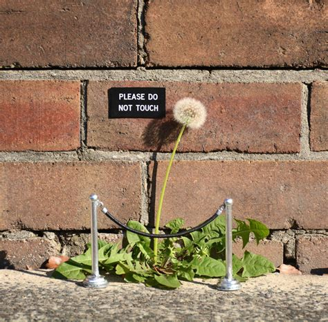 Artist Leaves Funny Signs On Streets For People To Find